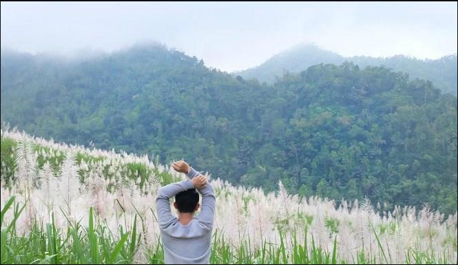 Wisata Instagramable di Kebun Tebu Gendu Jogja | Warnabiru.com